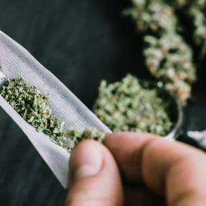 Utilisation d'un mélange de plantes et herbes à fumer